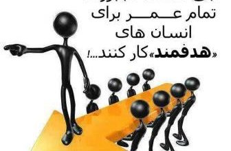 تصویر از بهترین انتخاب رشته کنکور شیراز – انتخاب رشته کنکور تجربی در شیراز