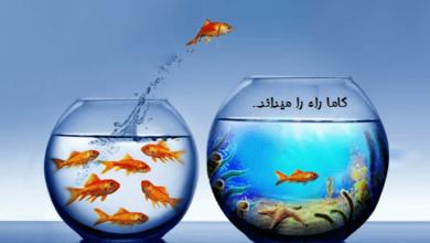 تصویر از مشاور کنکور شیراز – ۲ تا از بهترین مشاوران تحصیلی شیراز را بشناسیم